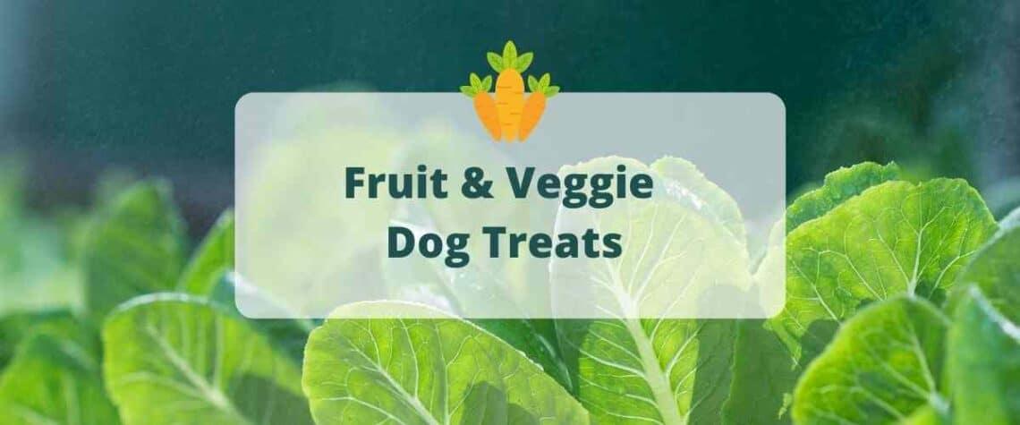 fruit and veggie dog treats recipe