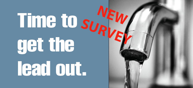 Lead Pipe Survey