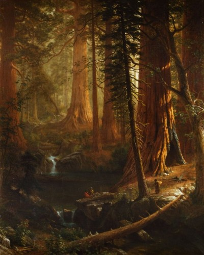 Giant_Redwoods_of_California_by_Alfred_Bierstadt