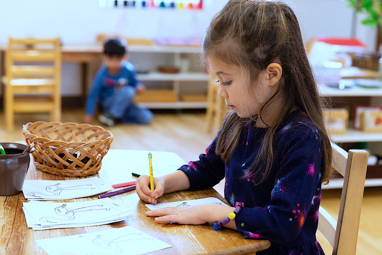 Girl drawing independently