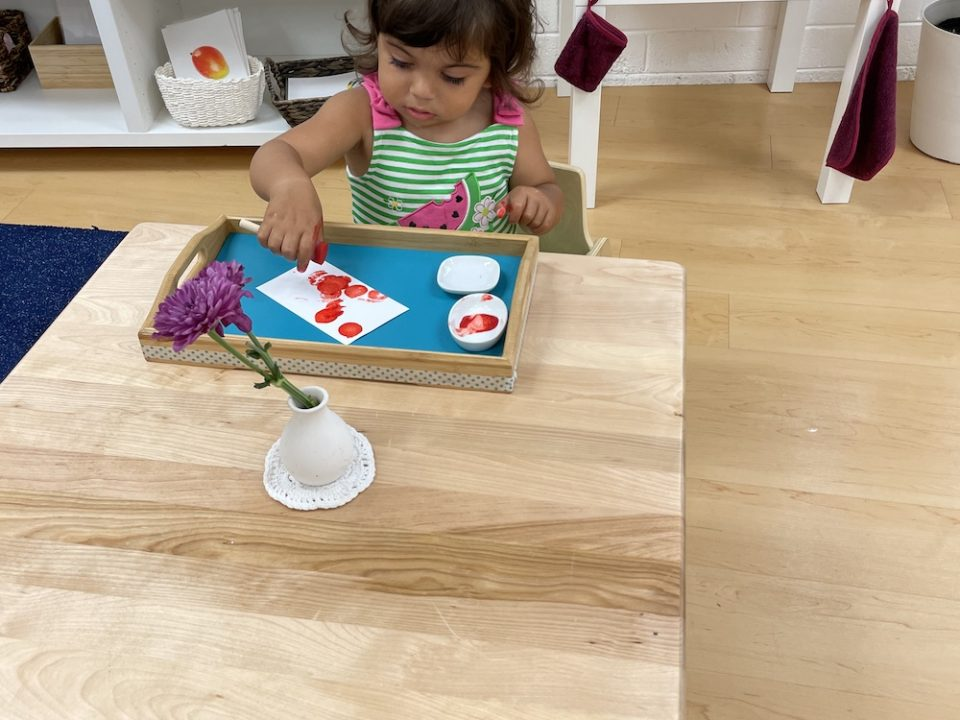 Is Montessori Education Effective?