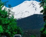 Oregon 2011: Plays, Pinots and Peaks