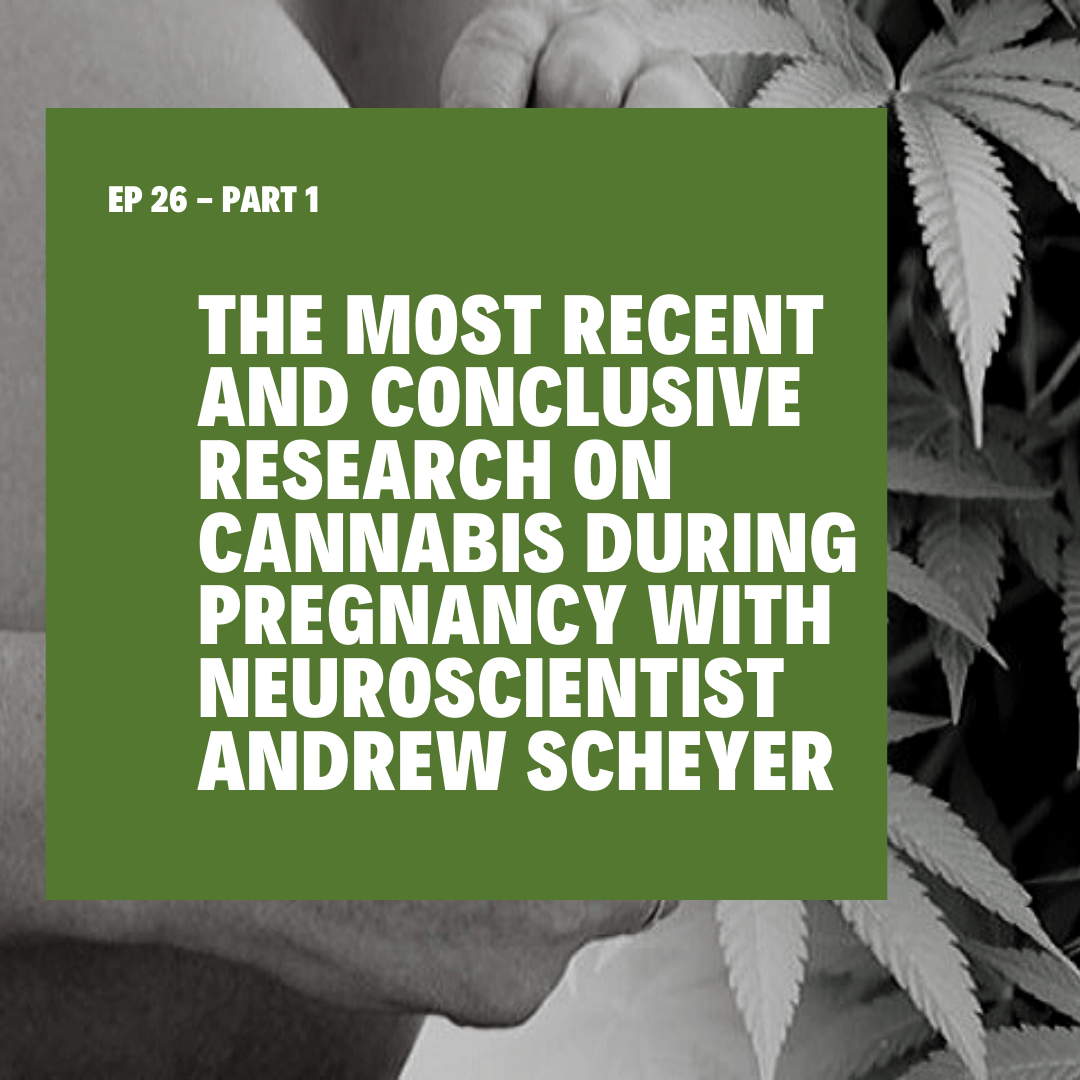 The Most Recent and Conclusive Research on Cannabis During Pregnancy with Neuroscientist Andrew Scheyer