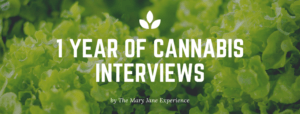 We Spent 1 Year Interviewing People About Cannabis – Here's What We Learned
