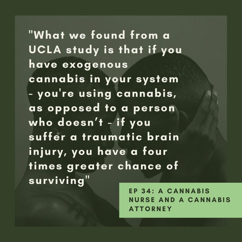 Ken Sobel Cannabis Quote