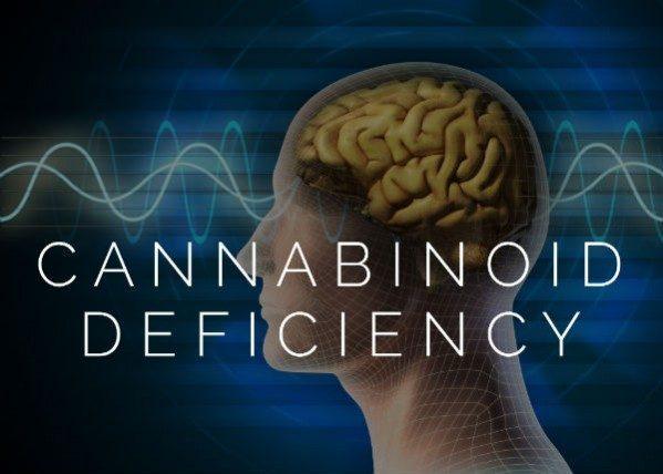 Endocannabinoid Deficinecy