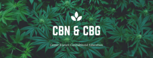 Lesser-Known Cannabinoids CBN and CBG with the Founder of Kat's Naturals