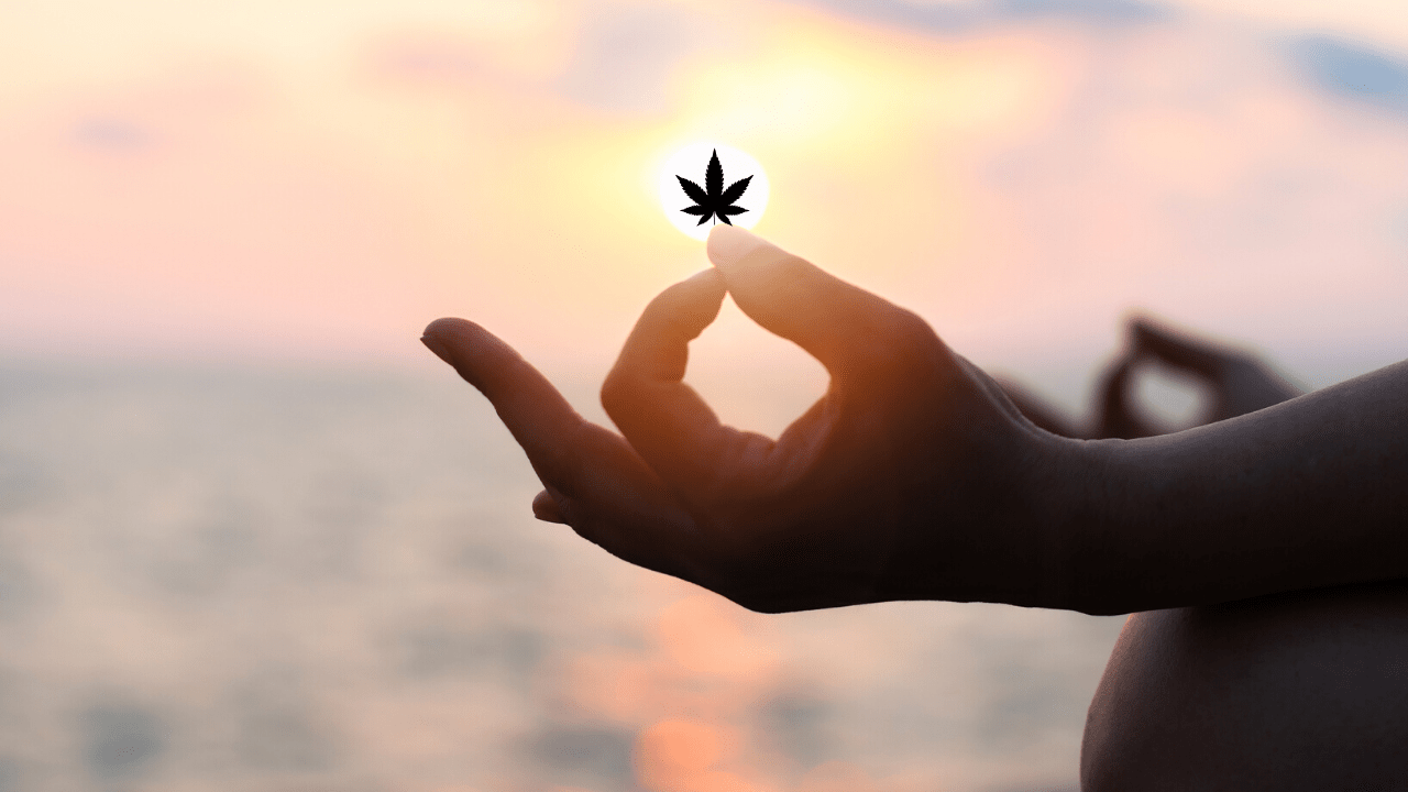 Cannabis Meditation