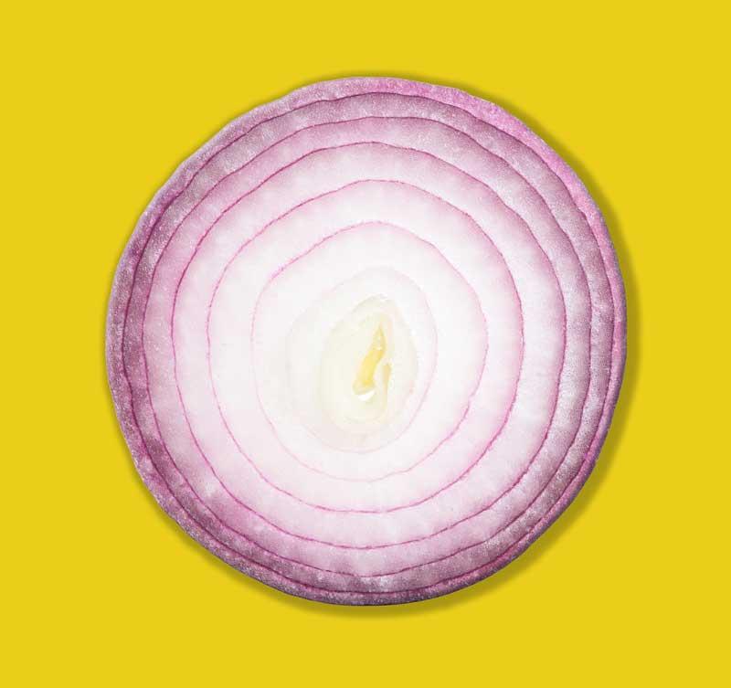 Onion layers representing SEO