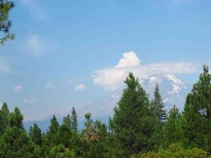 Mount Shasta sm