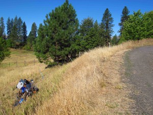 Bike in field front view 4 sm