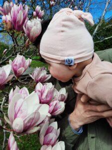 Magnolias and Memories
