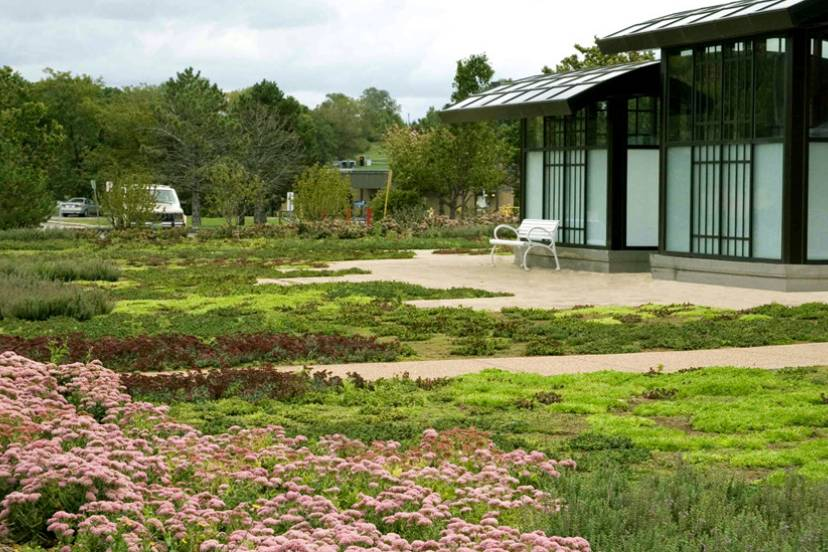 Boeing Corporation Green Roof