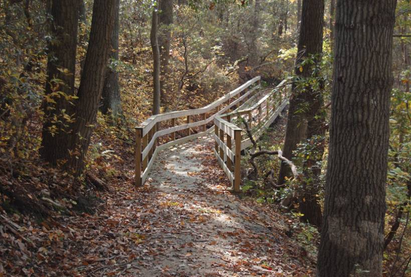 SummerWood Trail and Natural Area