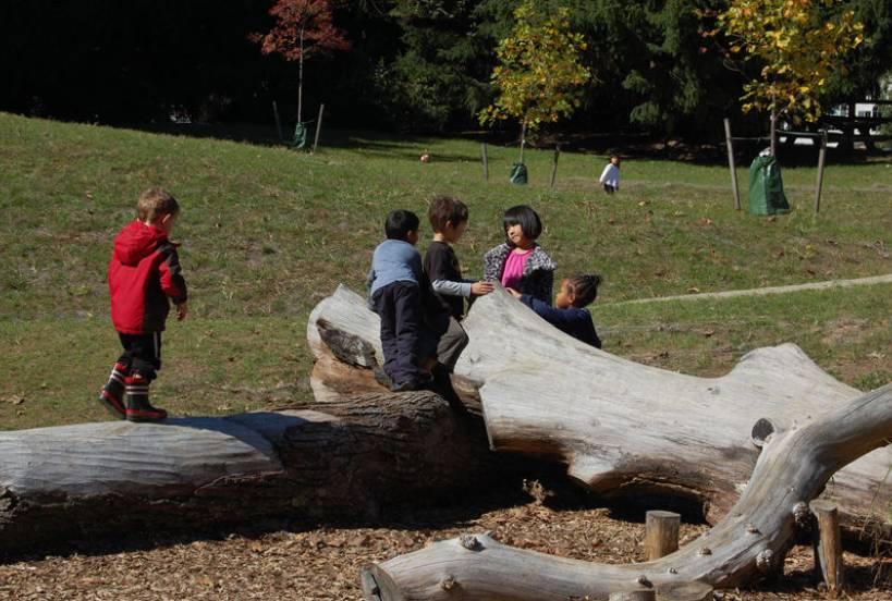The Montessori School Nature Playground