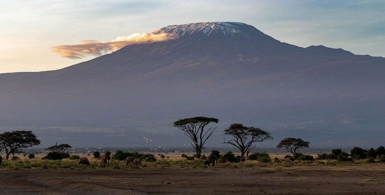 Cherie Climbs Kilimanjaro for Clean Water