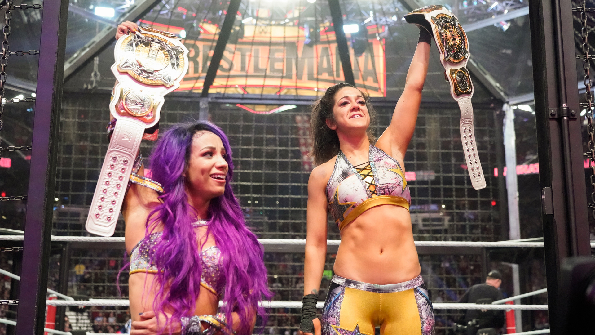 WWE Elimination Chamber Review 02/17/2019