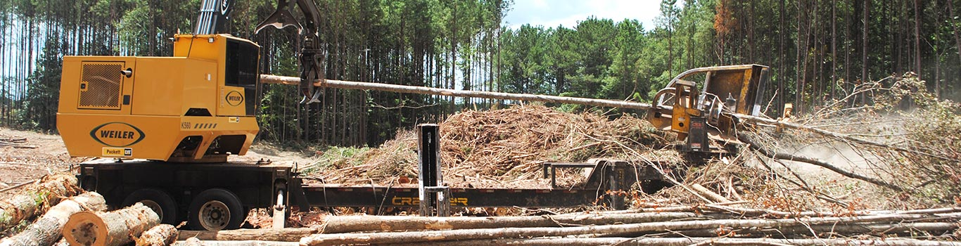 Puckett Forestry New Equipment