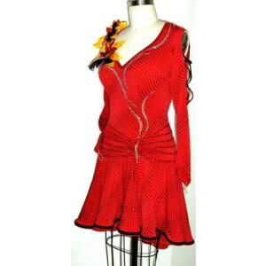 Moulin Rouge Dress 2