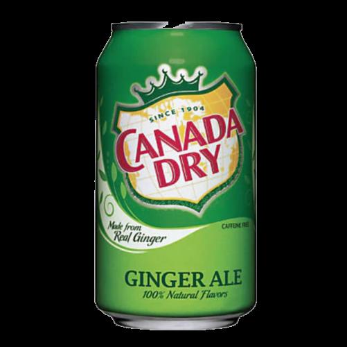 Ginger Ale – 20 oz