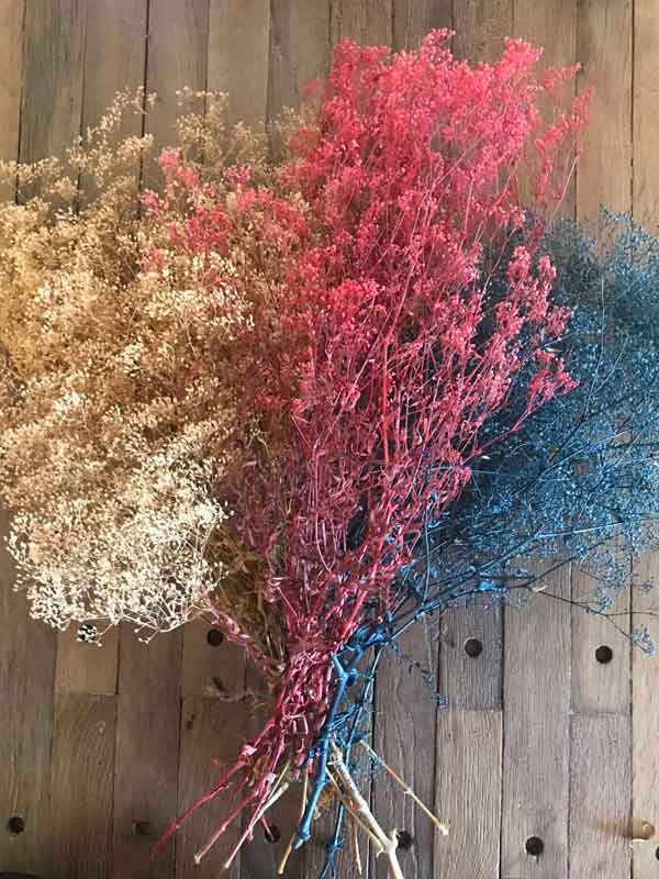 Preserved Baby's Breath Multiple Colors