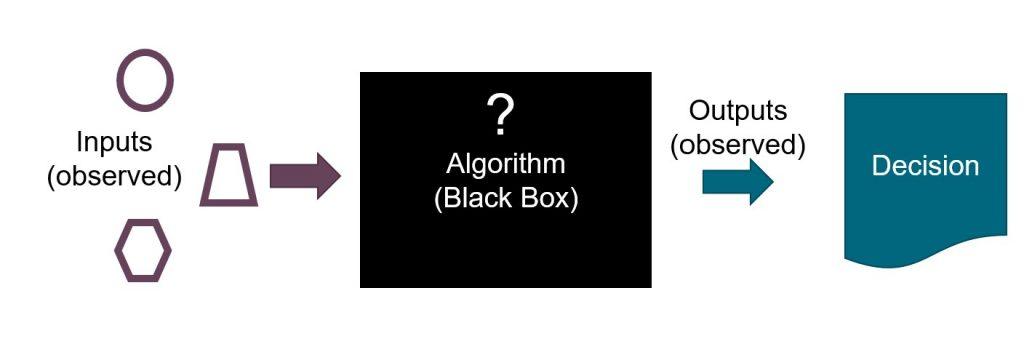 Bias And Algorithms. A Black Box Can Codify Bias