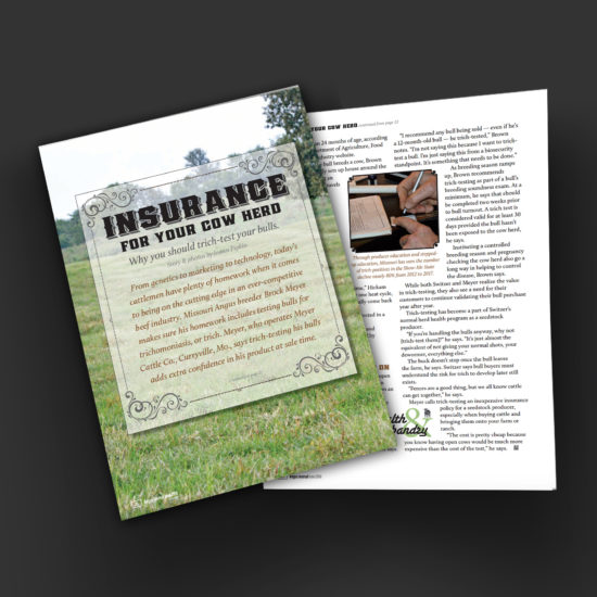 Trich-Testing - Insurance for your Cowherd