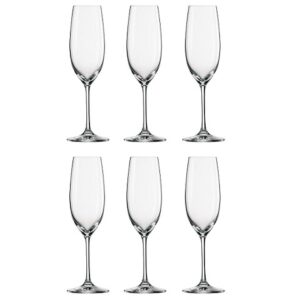 Schott Zwiesel Ivento Champagne _ Sparkling WIne Glass (Set of 6)