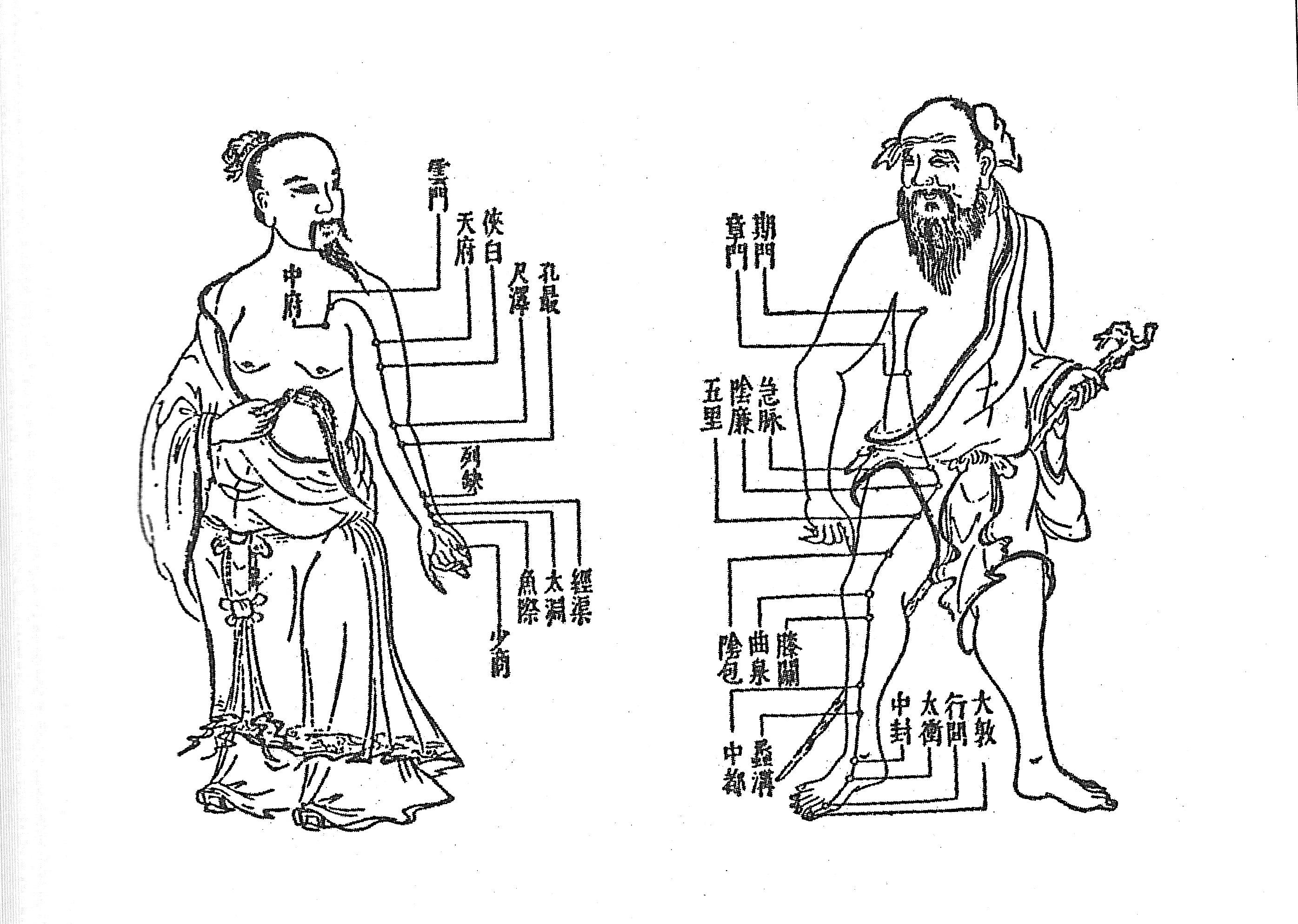 meridian-system