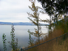 View from Legion Park