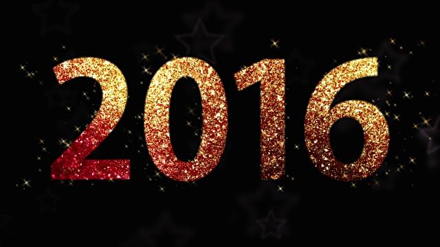 Goodbye 2015; Hello 2016!