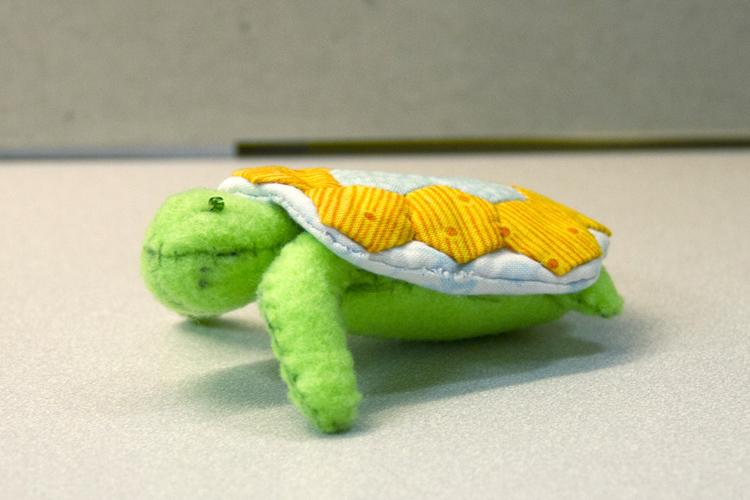 Turtles-08