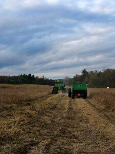 Locally-grown non-GMO livestock grains