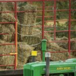 small hay bales, horse quality hay