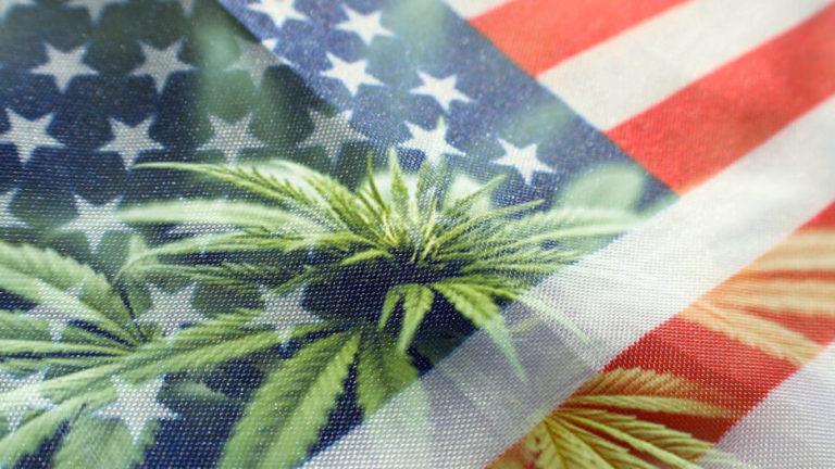 Are Cannabinoids Legal?