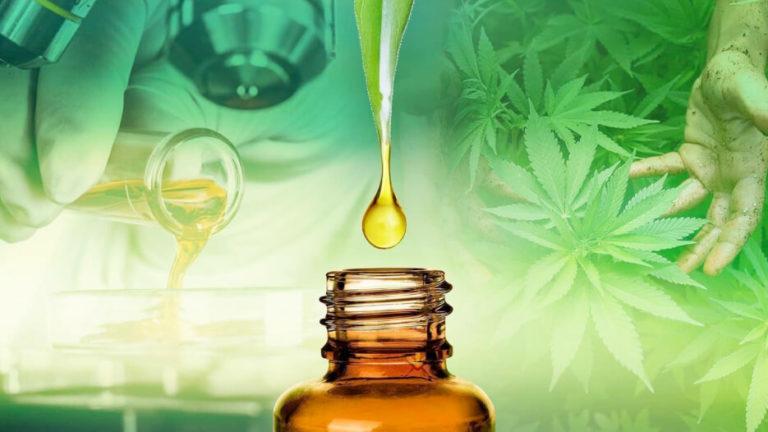 Exploring Cannabinoids: What is CBD?