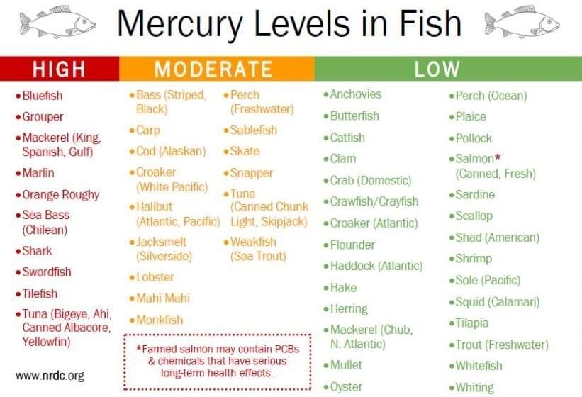 Mercury_in_fish_list