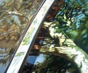 Car Art Print|Acadamy Sycamore