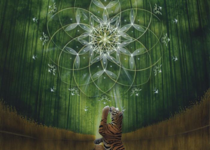 Flower of Meditation