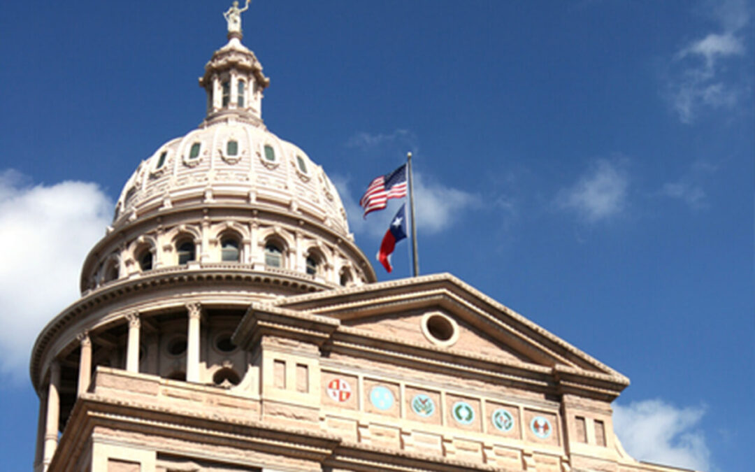 86th Texas Legislative Session Preview