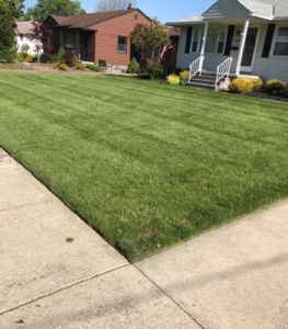 landscaping Amherst