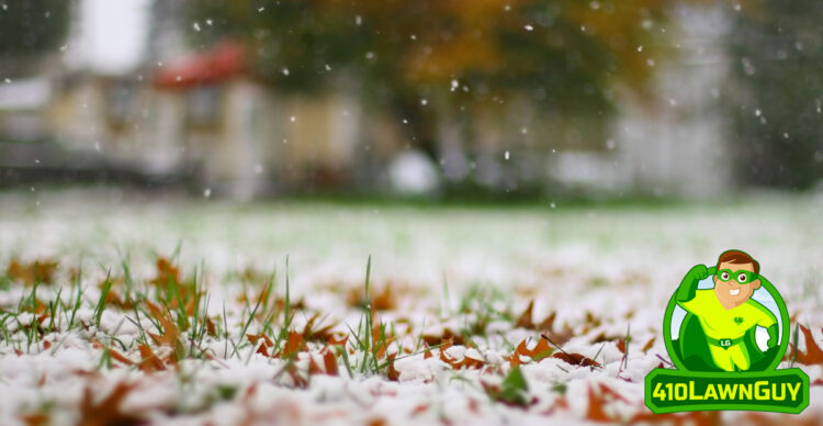 What Do You Put on Your Lawn in the Winter?