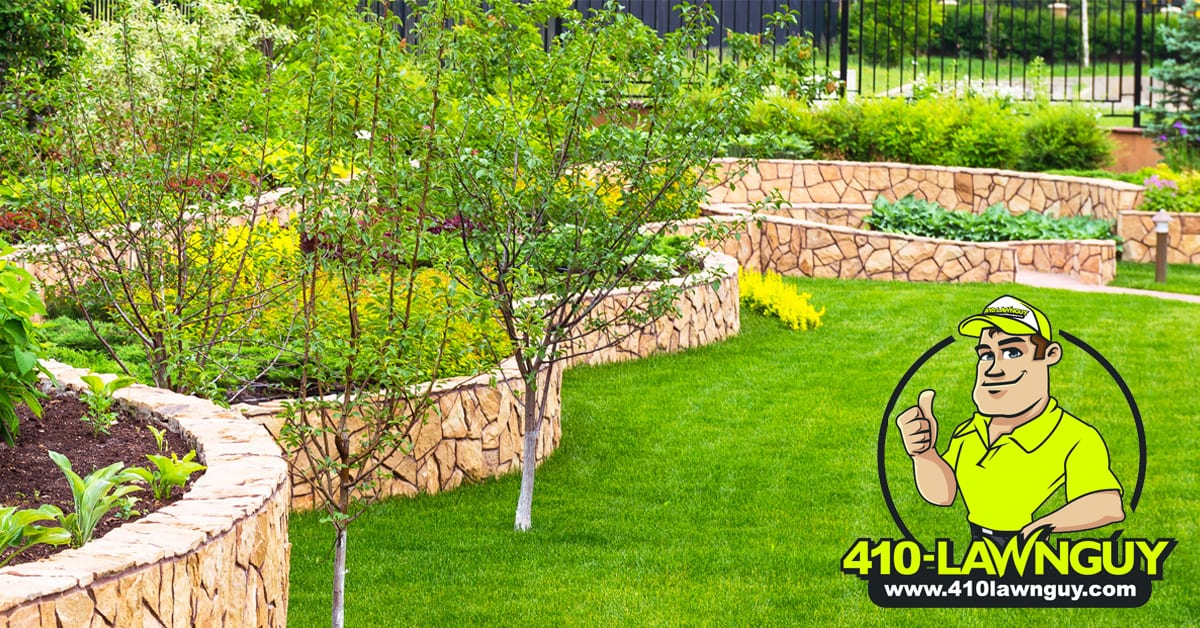 Residential Lawn Care 410lawnguy Severna Park