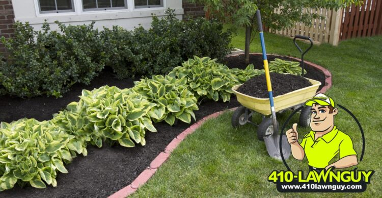 The Case for Mulch
