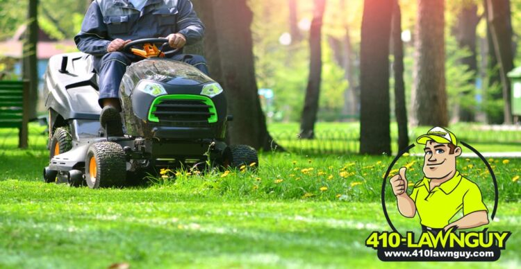 How To Properly Mow Your Lawn to Maintain its Health