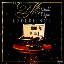 Album Cover dm world experience