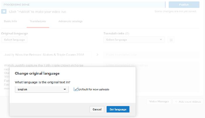 language options YouTube SEO