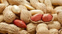 रोजाना 4 से 5 मूंगफली का सेवन सेहत के लिए वरदान