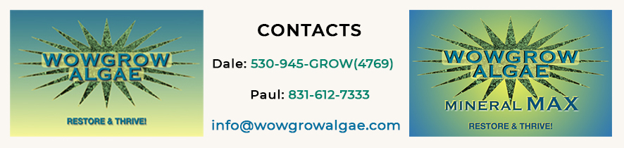 Contact information for WOWGROWAlgae bordered by logos for WOWGROWAlgae and Mineral MAX
