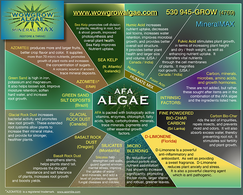 Pie Chart showing the nutrient components of WOWGROWAlgae Mineral MAX which are added to AFA algae to create the formula. Also included is some textual information on AFA and Mineral MAX
